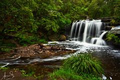 Hunts Creek Balaka Falls - Carlingford