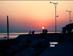 #فيديو #شروق #الشمس    #طيور بحرية #شاطئ #كرنيش#الخبر #القديم#Video #sunrise  #seabirds #Beach #Corniche #old #news #sea #birds (Instagram x3abr twitter x3abrr) Tags: old sea news beach birds sunrise video corniche seabirds شاطئ الخبر شروق الشمس القديم طيور فيديو كرنيش