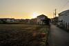 2008/11/17 07:01 Fujisawa (Masayo Nabeshima) Tags: morning sunlight nikon d3
