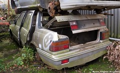 Rover 213S (XBXG) Tags: auto old uk holland classic netherlands car yard rust automobile nederland rusty s rover voiture british junkyard scrapyard scrap casse 213 paysbas corrosion emmeloord roest sloop ancienne engels brits rouille rouill roestig gaos anglaise sloperij 213s autosloop autosloperij