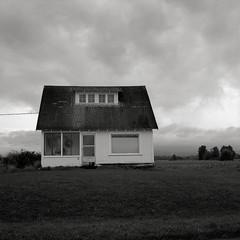 House, Sauvie Island (austin granger) Tags: house film oregon farmhouse rural square farm columbia crop land willamette sauvieisland gf670 austingranger