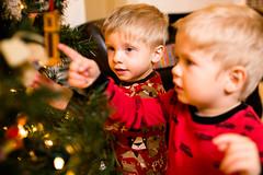 20141201_Christmas Decorating_IMG_0220 (Tom Cannon) Tags: louisvillephotographer kentuckyphotography kyphotography louisvillephotography kentuckykyphotographer thomascannonphotographyllc thomascannonphotography