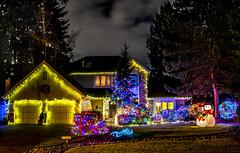Holiday Lights (Mill Creek Multi Media) Tags: christmas xmas house holiday home lights frosty led neighborhood wa mcca millcreek leglamp elfaward