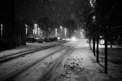 IMG_0895-copy (jorma.) Tags: blackandwhite bw monochrome estonia 14 snowstorm bnw eesti tartu talv lumetorm lumesadu