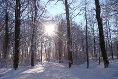 Winterzeit ... (Kindergartenkinder) Tags: schnee winter kindergartenkinder