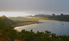 Early Morning Light (nebulous 1) Tags: light nature water clouds river landscape nikon break explore tenmileriver earlymorninglight 10mileriver d7000 nebulous1
