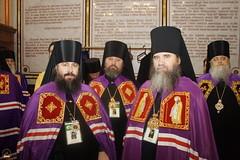 181. Еп. Арсений на Поместном Соборе 2009 г