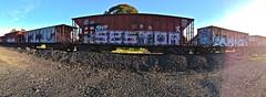 Tie Sestor Reks (always_exploring) Tags: panorama train graffiti tie explore bayarea graff lurk reks wholecar wkt riptie sestor fr8s bayareagraffiti fr8heaven tieforever