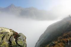 der Nebel (welenna) Tags: blue autumn mist mountain mountains alps fog landscape switzerland nebel view swiss natur berge alpen morgen berneroberland schwitzerland grimselwelt
