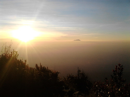 "Pengembaraan Sakuntala ank 26 Merbabu & Merapi 2014 • <a style=""font-size:0.8em;"" href=""http://www.flickr.com/photos/24767572@N00/26888546250/"" target=""_blank"">View on Flickr</a>"