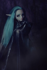 Labyrinth Forest (Klio.13) Tags: monster toys high dolls ooak elf custom darkforest customdolls dollphotography toyphotography ghoulia monsterhigh ghouliayelps