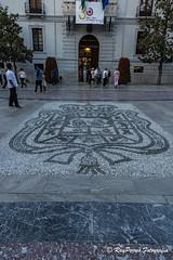 Escudo en el suelo de la Plaza del Carmen de Granada, Andalucia, Espaa. (RAYPORRES) Tags: espaa andalucia granada mayo vacaciones cera ayuntamiento escudo ayuntamientodegranada empedrado 2016 plazadelcarmen