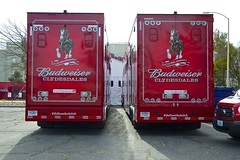 DSC_0033-a11 (stumbleon) Tags: california people horse beer truck team nikon nikond70s demonstration budweiser fairfield hitch peterbuilt heavyhorses anheuserbusch solanocounty clydsdale beerwagon demonstrationteam kttrailer horsehandelers