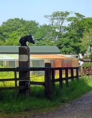 Stud (Bricheno) Tags: scotland escocia szkocja schottland dunlop ayrshire scozia cosse  esccia   bricheno scoia