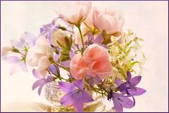 (evisdotter) Tags: flowers macro blommor 2in1 textured bukett