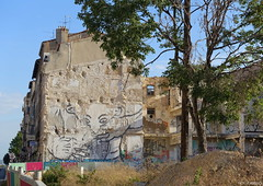 ZOO PROJECT (BE'N 59. Street photographer) Tags: streetart marsille zooproject portedaix bilalberreni