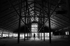 (Caleigh Anne) Tags: light horse woman white black abandoned girl lines female contrast race nikon track body geometry massachusetts d7000