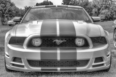 2013 Ford Outlaw 'Stang (J.L. Ramsaur Photography) Tags: blackandwhite bw ford photography photo blackwhite nikon tennessee engineering pic photograph nik thesouth mustang fordmustang hdr cumberlandplateau cookeville fomoco engineeringasart 2016 photomatix putnamcounty cookevilletn bracketed silverblack middletennessee fordmotorcompany hdrphotomatix ofandbyengineers hdrimaging cookevilletennessee ibeauty hdraddicted tennesseephotographer southernphotography screamofthephotographer hdrvillage silverefex engineeringisart jlrphotography photographyforgod worldhdr tennesseehdr d7200 niksilverefexpro2 2013fordmustang hdrrighthererightnow engineerswithcameras hdrworlds jlramsaurphotography nikond7200 cookevegas outlawstang
