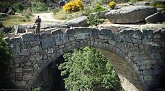 Puente sobre el Barbellido (eRdAvE) Tags: barbellido vila flyfishing gredos