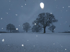 silent snowfall (rospix+) Tags: uk trees winter sky cloud snow cold nature weather wales landscape countryside fields 2013 rospix