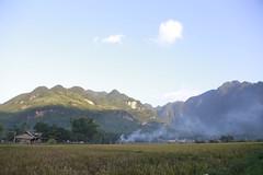_MG_0591 (liem.ionetour) Tags: travel beautiful landscape nice asia tour du vietnam tay viet mai re gia dep sapa nam bac chau ione maichau dulich mocchau taybac hapdan ionetour