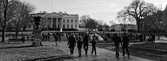 Commemorative Red Ribbon White House 2014 World AIDS Day 50178