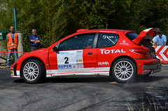 Peugeot 206 WRC (benoits15) Tags: old classic car vintage french automobile rally 206 automotive voiture racing historic retro wrc peugeot coches rallye anciennes worldcars