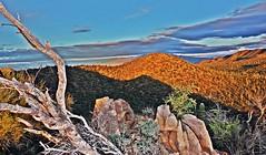 Sunset, Saguaro National Park, Arizona. (William Jensen Photography) Tags: saguaronationalpark sonorandesert pimacountyarizona