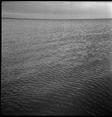 - (jenci975) Tags: bw white black 6x6 film analog mom 400 epson boxcamera v550 foma fotobox fomapan pyrocat