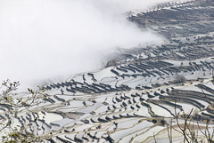 468 Yuanyang (farfalleetrincee) Tags: china travel mountains tourism nature fog landscape asia rice adventure guide yunnan riceterraces yuanyang agricolture 云南省 xinjiezhen 元阳县