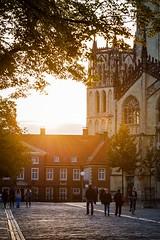 821505345827716 (selleheeralall6517) Tags: city sunset people urban sunlight vertical germany europe cathedral north munster rhinewestphalia rhinewestphalen