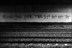 Neka PWS Sone TBF 1T (Alex Ellison) Tags: urban graffiti boobs tag railway sone line graff trackside northlondon neka pws 1t nekah neks paintwasters