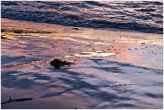 Sunset . (:: Blende 22 ::) Tags: sunset sea sun seascape color beach water clouds canon rocks colorful wasser sonnenuntergang cloudy wolken australia steine tasmania australien ufer sonne farbig sonnenstrahlen wellen abends tasmanien bewölkt bicheno waterwaves canoneosd canoneos5dmarkii