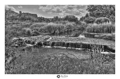 Rio Jiloca  ByN (firma) (jaimepili) Tags: rio jiloca
