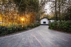 Sunset In Fuzhuang, Hefei (Picocoon) Tags: road sunset garden chinese bamboo classical hefei baohe fuzhuang