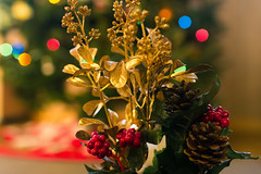 Pretty Christmas Wreath (Michael Bentley) Tags: decorations christmastree christmaslights canonef35mmf14lusm 3652014 2014yip