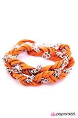 2905_2Image2(Orange18-205)