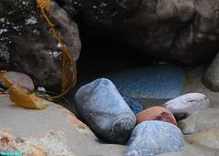 DarkCornersOfTheTidePools (mcshots) Tags: california travel winter usa seaweed beach nature colors rock coast sand rocks stones stock boulders socal kelp lowtide geology mcshots tidepools losangelescounty