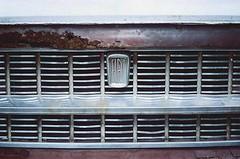 Abandoned Fiat Part 2 (akurasai) Tags: wild plant abandoned film broken car analog 35mm vintage fiat kodak ishootfilm filmcamera fujica kamera industar 50mmlens filmisnotdead colorplus fujicast801 believesinfilm