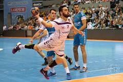 fenix-nantes-20 (Melody Photography Sport) Tags: sport deporte handball balonmano valentinporte fenix toulouse nantes hbcn h lnh d1 canon 5dmarkiii 7020028