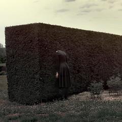Le Jardin des Rves (VINSO Photographie) Tags: david france art nature floral garden french fantastic nikon dress natural robe alice dream bordeaux jardin mm 50 franais d800 labyrinthe rve merignac vinso