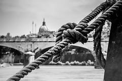 knots (TIBBA69) Tags: nodi knots andreatiberini biancoenero roma rome bokeh sfuocato urban street city