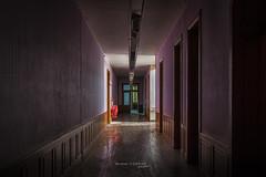 Le btiment 118 (www.darnoc.fr) Tags: photoshop jaune canon eos violet bleu abandon maison batiment ancien lightroom 6d urbex industriel abandonn 24105 violette pourpre friche 24105mm ef24105mmf4lisusm eos6d