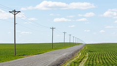 Limitless (John Westrock) Tags: road rural washington bluesky pacificnorthwest telephonepole farmfield canon135mmf2lusm canoneos5dmarkiii