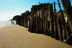 Is this a fence ? (Costigano) Tags: ireland irish beach canon fence eos sand scenery outdoor scenic bluesky friday wexford