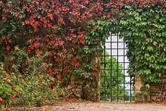 PORTUGAL - Tomar - Jardim do Convento de Cristo (Infinita Highway!) Tags: trip travel flores portugal europa europe sony porta viagem tomar infinitahighway alph77