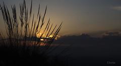 Anocheciendo (:) vicky) Tags: sol valencia canon contraluz olympus v nubes puestadesol visionario photopills vickyepla flickrvicky