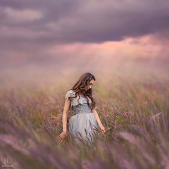 Spring Dreams ({jessica drossin}) Tags: flowers light sunset woman art girl beauty field clouds hair weeds alone dress natural lace fine dream curls teen dreamy wildflowers rays jessicadrossin jessicadrossinphotography wwwjessicadrossincom jdbeautifulworldcollection