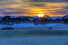 Devon Meadows Sunrise (Thunder1203) Tags: longexposure mist fog rural sunrise canon au earlymorning australia victoria farmland slowshutter hdr lightroom cranbournesouth devonmeadows botanicridge thunder1203