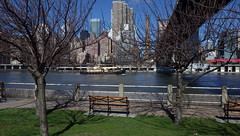 A Very Brisk Walk on Roosevelt Island, Along East River with Boat - IMGP4171 (catchesthelight) Tags: skyline buildings manhattan bluesky views eastriver tugboat benches queensborobridge rooseveltisland 59thstbridge tudorcity newyorkcityny springvisit edkochbridge april2016